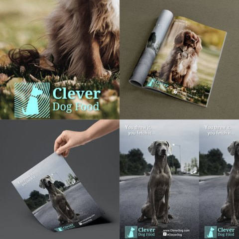 My work for clever dog