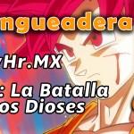 Hangueadera 20: Cuando Goku se dio cuenta de su alergia a los gatos