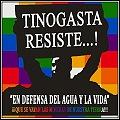 Cat Tin Resiste120