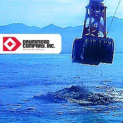 http--www.razonpublica.com-images-2013-centrales-Alvaro Pardo desastre Drummond RazonPublica