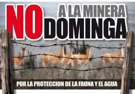 no a mina dominga-chile