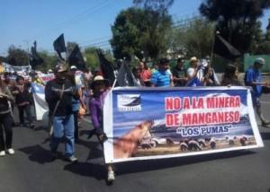 no a la mina los pumas chile