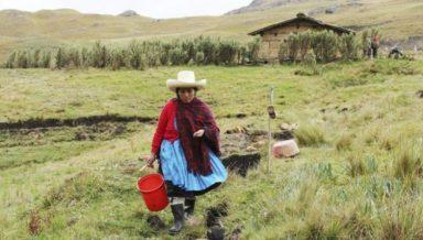 Máxima Acuña, defensora Cajamarca, Perú