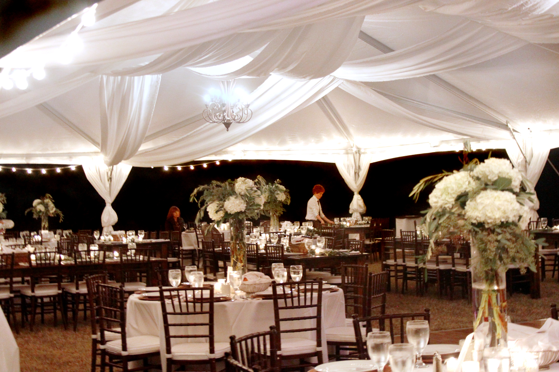 extra large folding chair captains gym frame tents - oconee event rentals   tents, farm tables, crossback chairs athens, ga