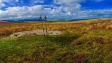 Dartmoor Nordic Walking