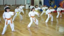 Karate (IDENAP Creative Commons)