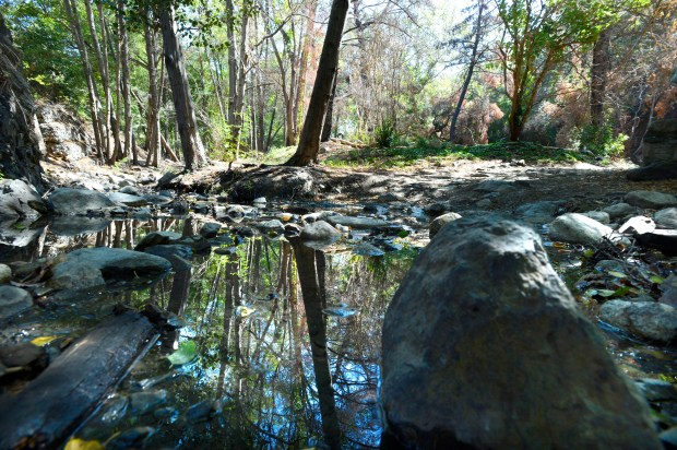 Holy Jim Canyon in Trabuci Canyon on August 11, 2014. (Photo by Christine Cotter, Orange County Register)