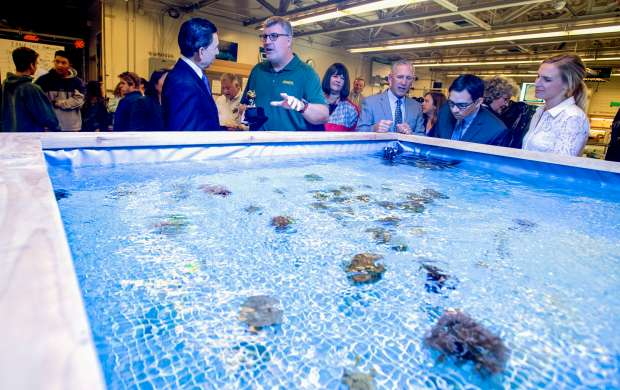 Gregory Paul Gardiner, center, shows off his student-built coral fragging tank at Edison High School to Al Mijares, Orange County's superintendent. Gardiner won a Teacher of the Year award from the Orange County Department of Education in Huntington Beach, California, on Tuesday, May 2, 2017. (Photo by Jeff Gritchen, Orange County Register/SCNG)