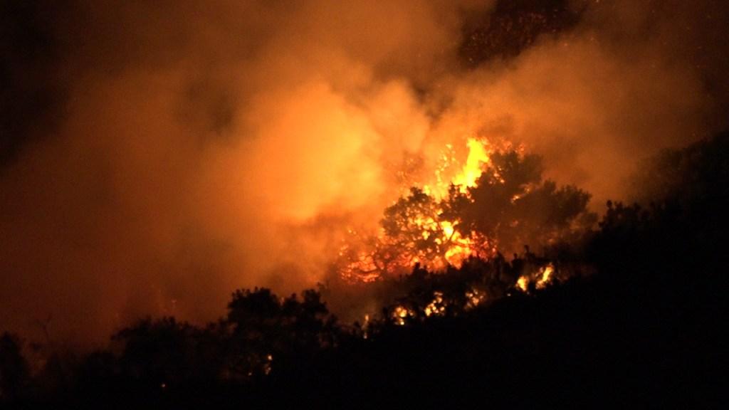 Vegetation fire burns 1 acre near Orange Hill restaurant
