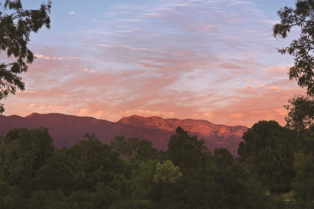 "The ""pink moment"" in Ojai."