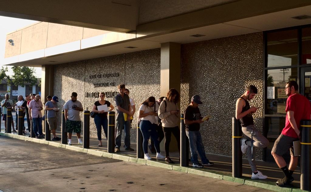 Election Voter registration at DMV churns up big numbers