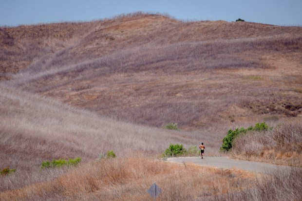 This 320-acre parcel adjacent to Chino Hills State Park ...