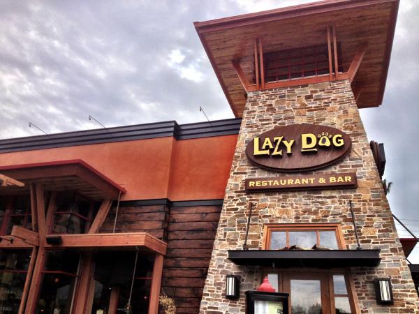 Lazy Dog testing new ground in Brea  Orange County Register