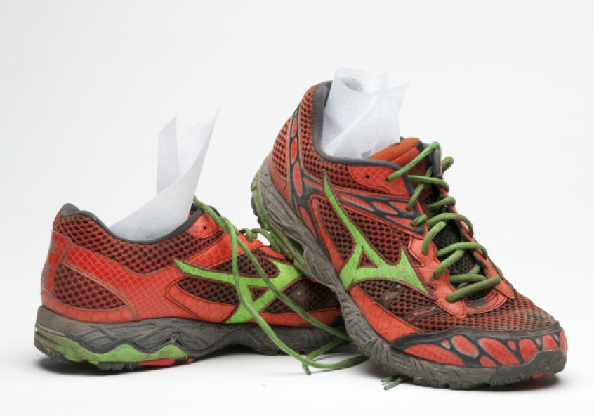 Image result for dryer sheets in shoe