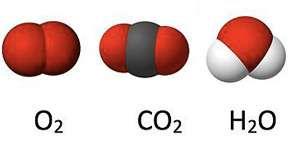 Molecule de oxigen dioxid de carbon și apă care trec printr-un perete care respiră
