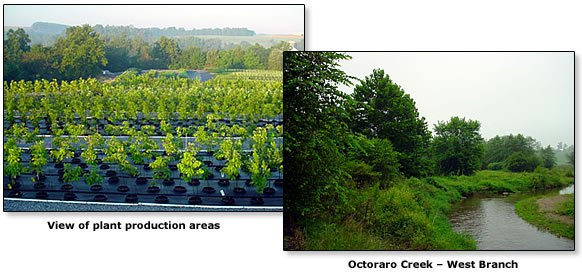 Plant production areas and Octoraro Creek
