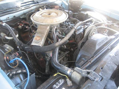 Coachbuilt 1979 Ford Thunderbird Convertible