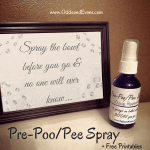 Homemade Pre Poo Pee Spray Bathroom No Stink