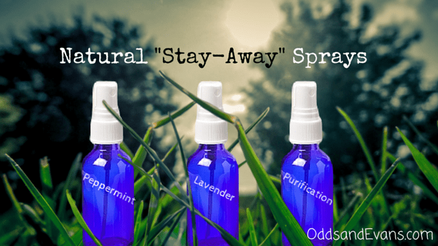 DIY Natural Repellent Stay Away Sprays - Homemade pest control using essential oils plus other uses