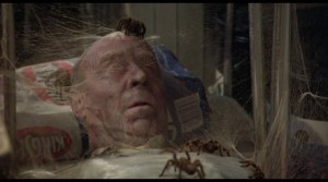 kingdom-of-the-spiders - Kingdom-Death-spider.jpg