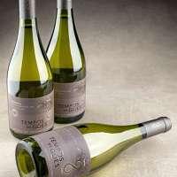 Vinho Tempos de Góes Reserva Sauvignon Blanc - Colheita de Inverno é premiado em Concurso Internacional