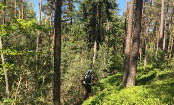 Trail von hinten 1