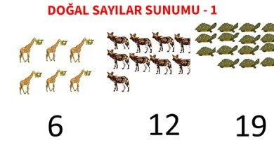Photo of İlkokul 1.Sınıf Matematik Doğal Sayılar Sunumu – 1