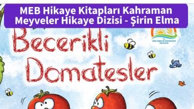 Photo of MEB Hikaye Kitapları Kahraman Meyveler Hikaye Dizisi – Becerikli Domatesler – PDF İndir