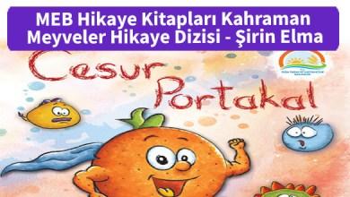 Photo of MEB Hikaye Kitapları Kahraman Meyveler Hikaye Dizisi – Cesur Portakal – PDF İndir