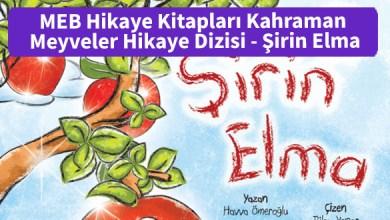 Photo of MEB Hikaye Kitapları Kahraman Meyveler Hikaye Dizisi – Şirin Elma – PDF İndir