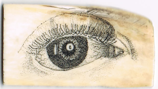 Scrimshaw 8Ball Pupil