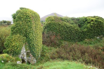 10 Ivy clad Ardea Castle destroyed during Cromwellian times