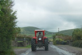 2-hussey-originally-planned-a-career-in-farming-dingle-31-july-2011-7