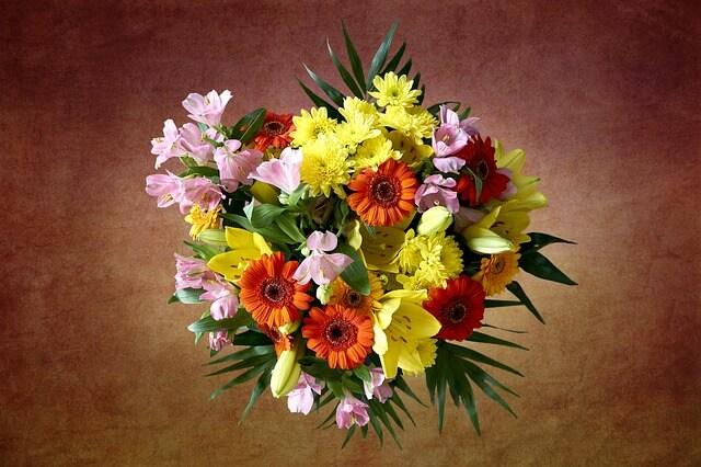 Proč muži ženám dávají řezané květiny?