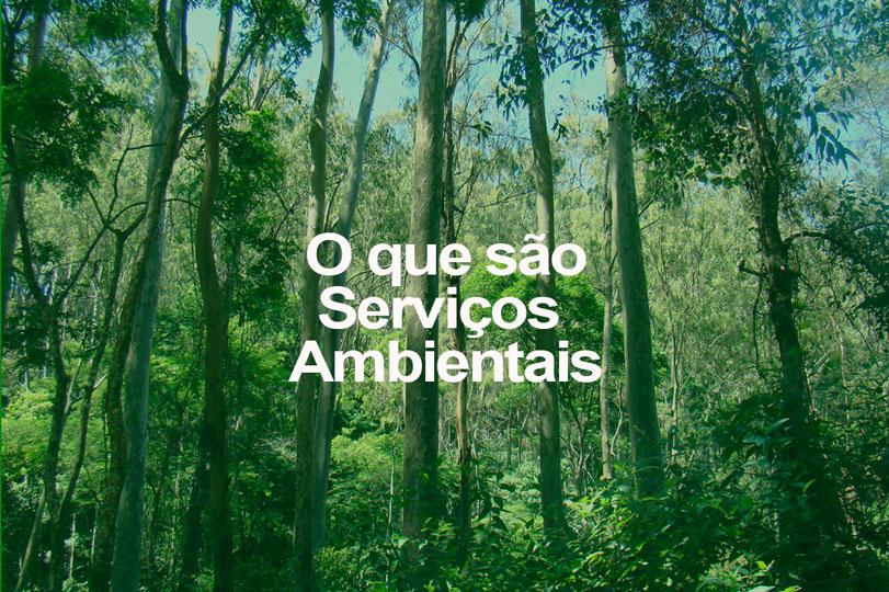 o-q-servicos-ambientais