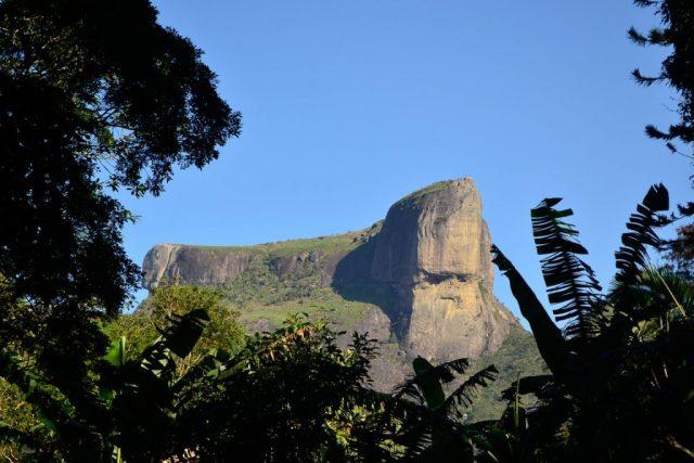 Parque Nacional da Tijuca . Foto: Peterson de Almeida