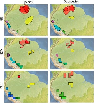 Mas modelos com dados mais atuais indicam que outros fatores interferem na diversificação de espécies e surgimento de áreas de endemismo, como demonstra este outro mapa.Fonte: Scientific Reports.