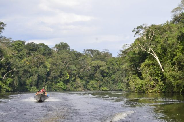 Decreto atinge o Parque Nacional Montanhas de Tumucumaque. Foto: Charly Sanches/Wikiparques.
