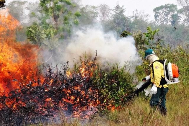 Nesta época do ano, ocorrem muitos incêndios, com período de seca intenso. Foto: Ibama.