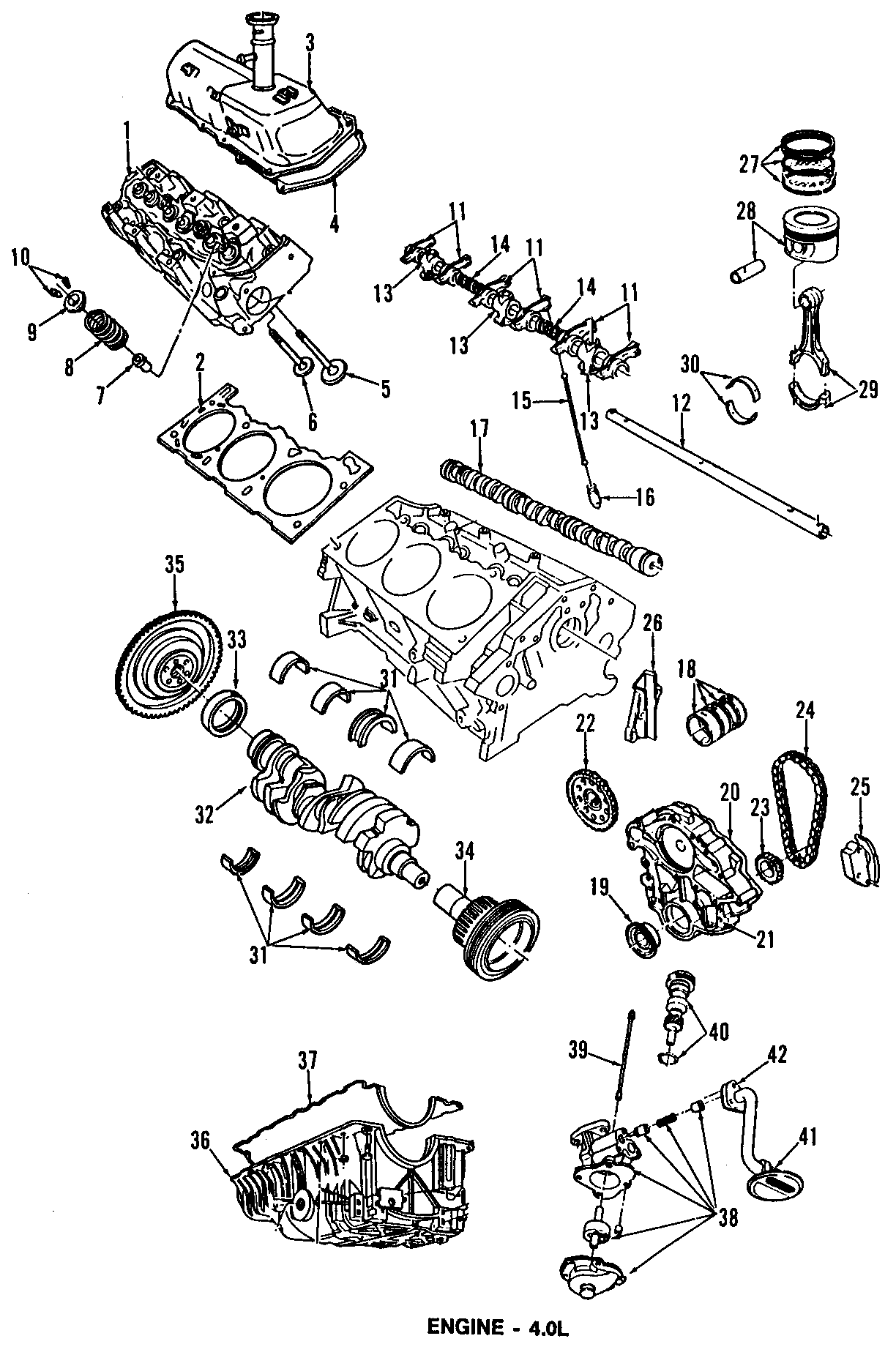 Ford Ranger Engine Timing Chain Guide. Along, BEARINGS
