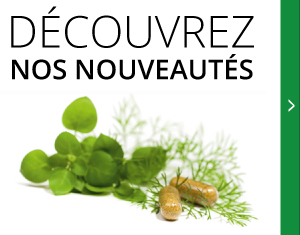 Découvrez nos nouveautés