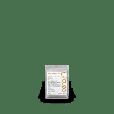 batteri malolattici