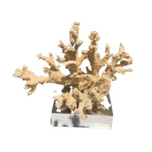 coral decor - big