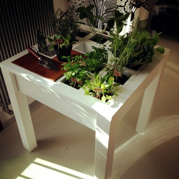 Creating a miniature garden on the coffee table is eve