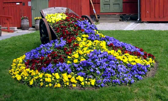 Creative Garden Ideas – Attractive Planting Flowers And Creating