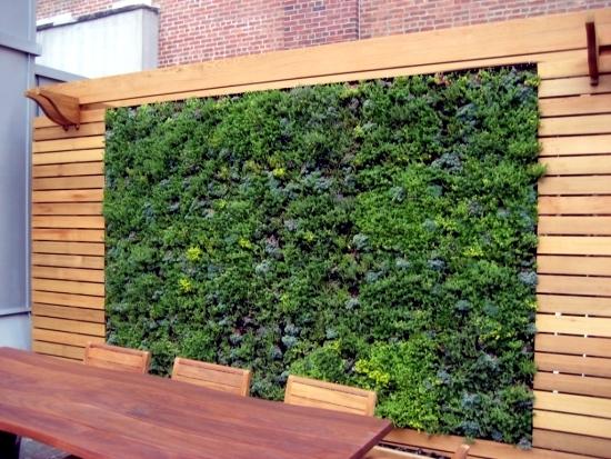 Balcony Privacy Screen With Vertical Garden Effective And Inexpensive Interior Design Ideas Ofdesign