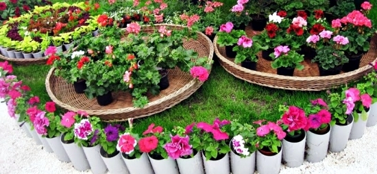 Make A Small Garden And Visually Enlarge – Tips And Tricks