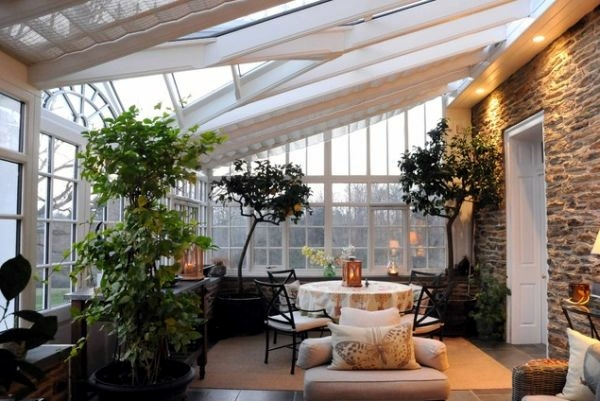 Winter Garden In The House – House Plants Bring Nature Indoors