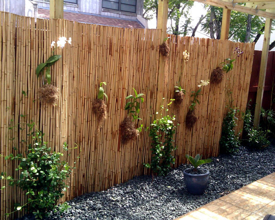 garden with a decorative bamboo fence