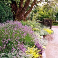 11 golden rules for attractive landscaping and garden ...